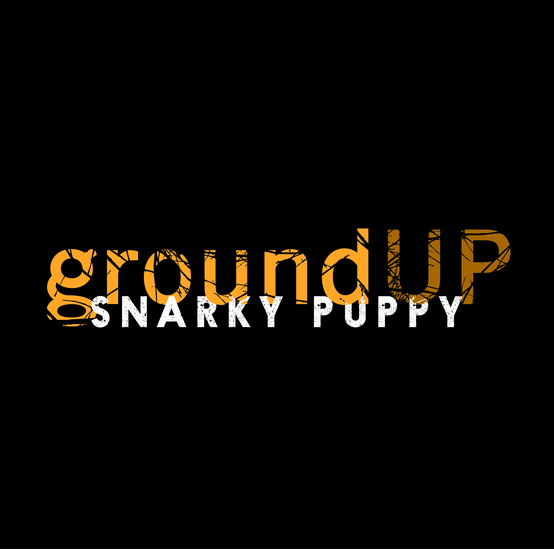 Snarky Puppy :: Press